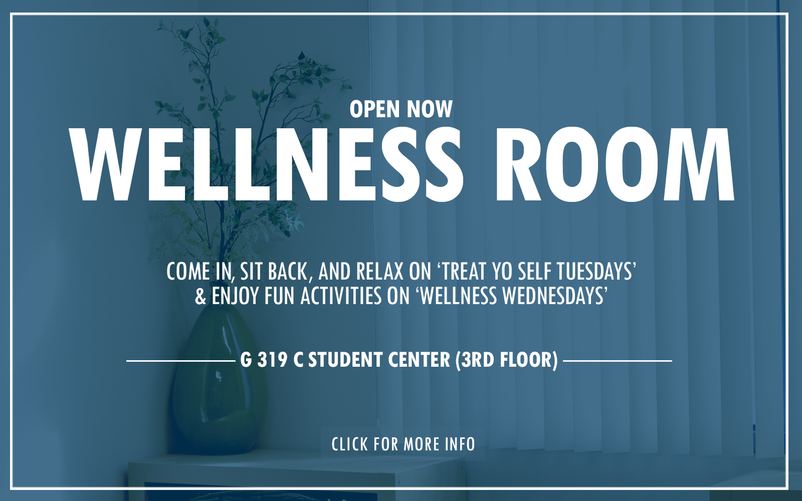 WellnessRoomSlider