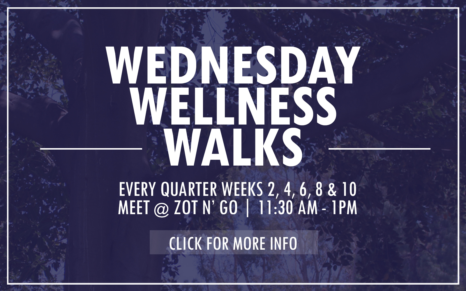 Wednesday Wellness Walks